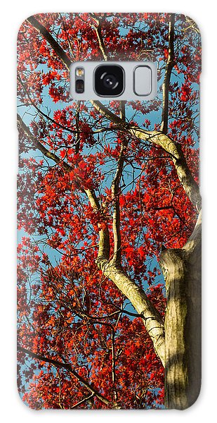 Spring Maple Galaxy Case