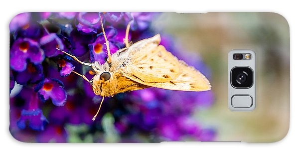 Spring Moth Galaxy Case