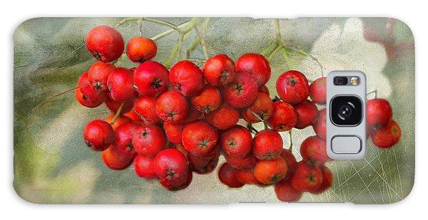 Spring Mountain Ash Berries  Galaxy Case