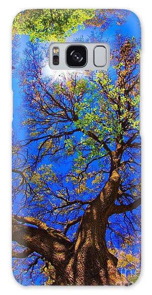 Spring Oak Galaxy Case