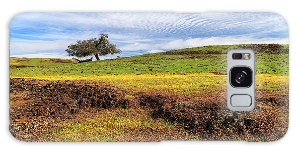 Spring On North Table Mountain Galaxy Case by James Eddy