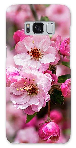 Spring Pink Galaxy Case