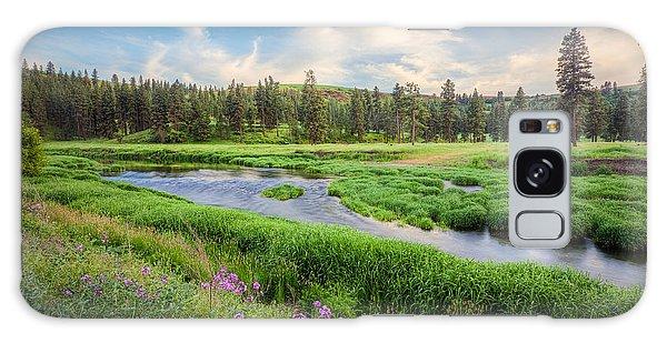 Spring River Valley Galaxy Case