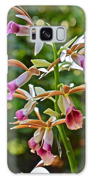 Spring Show 15 Nun's Orchid 1 Galaxy Case