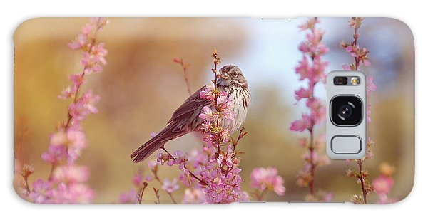 Spring Sparrow Galaxy Case by Lynn Bauer