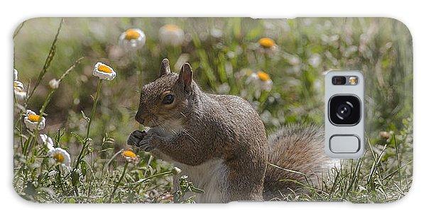 Spring Squirrel Galaxy Case