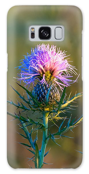 Spring Thistle Galaxy Case
