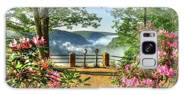 Wellsboro Galaxy Case - Spring Time At Colton Point State Park by Bernadette Chiaramonte