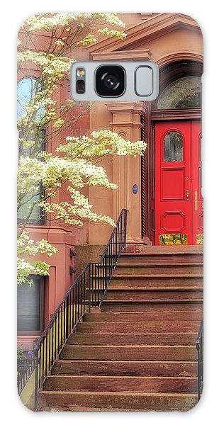 Bushnell Park Brownstone Galaxy Case