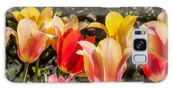 Spring Tuliips Galaxy Case by Jim Moore