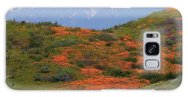 Spring Wildflower Display At Diamond Lake In California Galaxy Case
