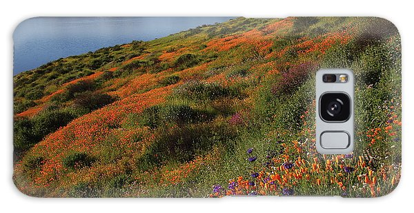 Spring Wildflower Season At Diamond Lake In California Galaxy Case