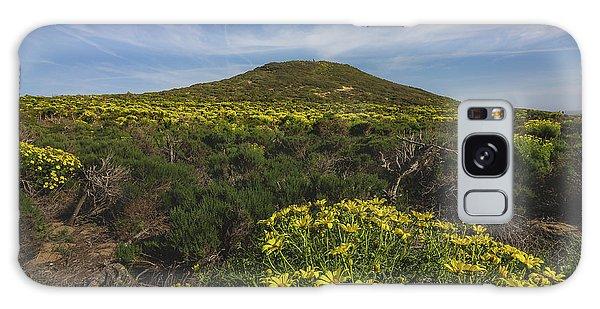 Spring Wildflowers Blooming In Malibu Galaxy Case