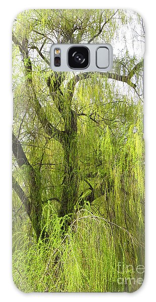 Spring Willow Galaxy Case