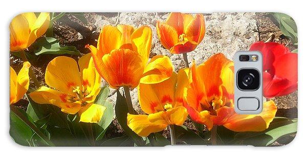 Springtime Flowers Galaxy Case