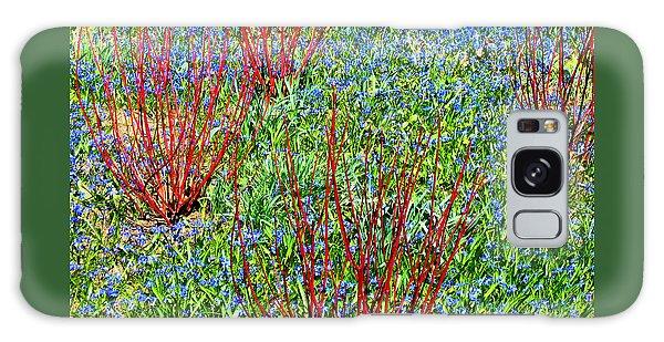 Springtime Impression Galaxy Case by Ann Horn