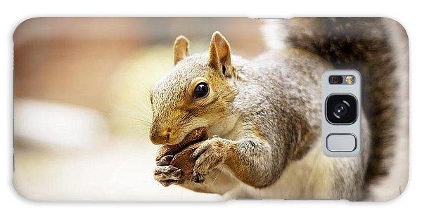 Squirrel Galaxy Case - Squirrel                      by Fran Sotu