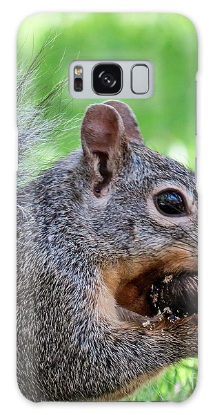 Squirrel 1 Galaxy Case