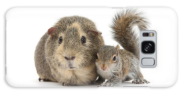 Squirrel And Guinea Galaxy Case