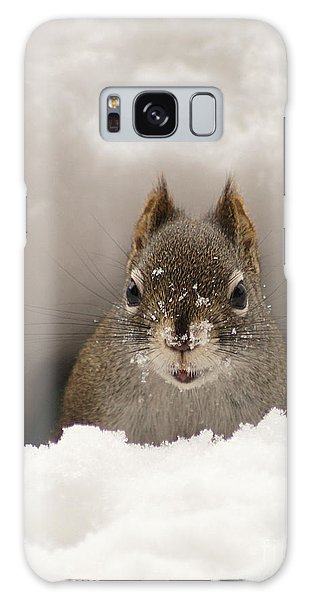 Squirrel In A Snow Tunnel Galaxy Case
