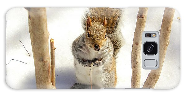 Squirrel In Snow Galaxy Case