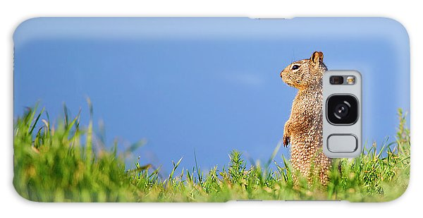 Groundhog Galaxy Case - Squirrel Look-out by Brian Knott Photography