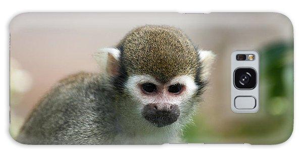 Squirrel Monkey Galaxy Case by Amanda Elwell