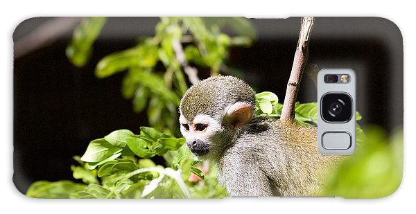 Squirrel Monkey Youngster Galaxy Case by Afrodita Ellerman