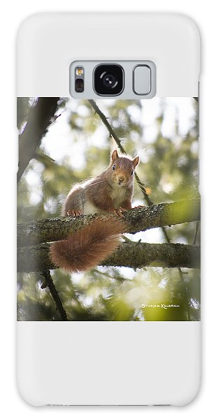 Galaxy Case featuring the photograph Squirrel On The Spot by Stwayne Keubrick
