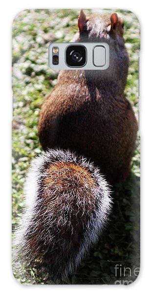 Squirrel S Back Galaxy Case