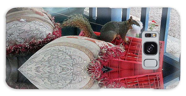 Squirrel Stealing Stuffing For A Nest Galaxy Case