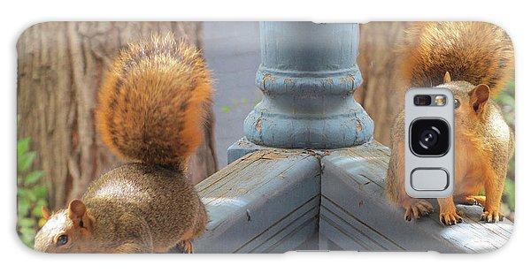 Squirrels Balancing On A Railing Galaxy Case