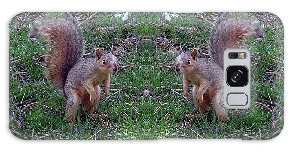 Squirrels With Question Mark Tails Galaxy Case