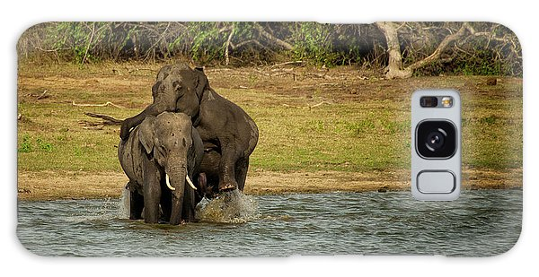 Sri Lankan Elephants  Galaxy Case