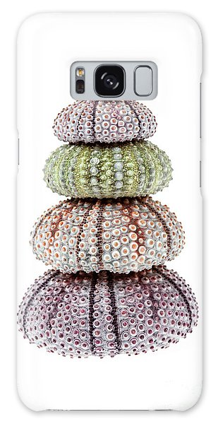 Sea Stacks Galaxy Case - Stack Of Sea Urchins by Elena Elisseeva