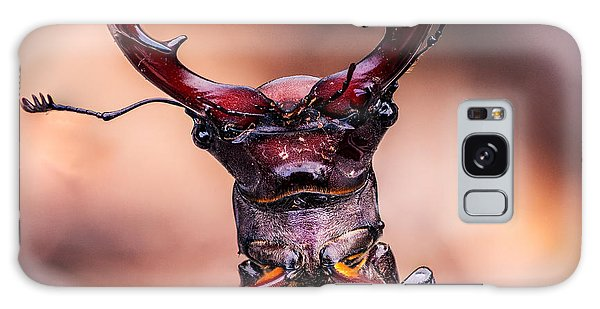 Stag Beetle Stare Down Galaxy Case