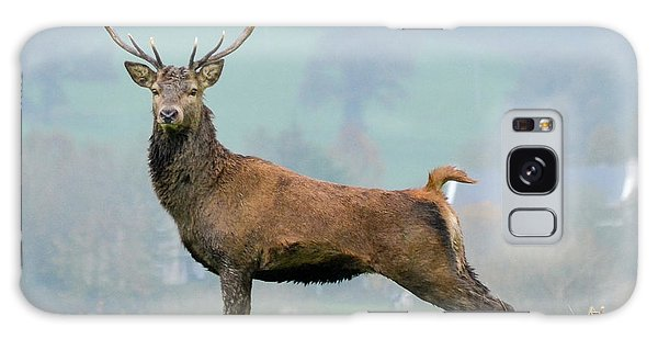 Stag Galaxy Case