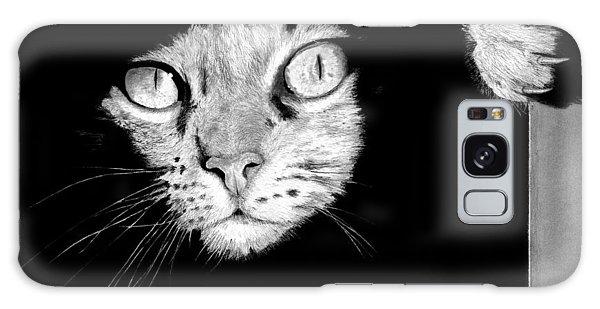 Hyper-realistic Galaxy Case - Stalker Cat by James Schultz
