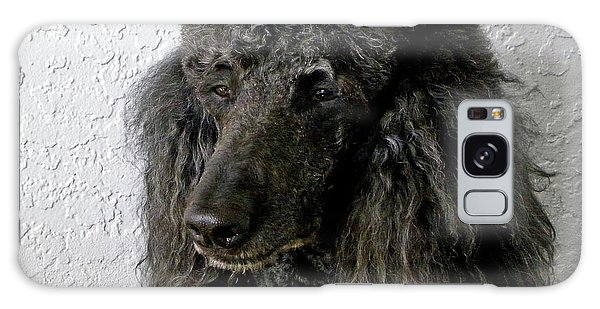 Standard Poodle Galaxy Case