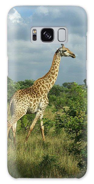 Standing Alone - Giraffe Galaxy Case