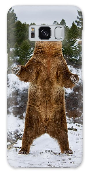 Standing Grizzly Bear Galaxy Case