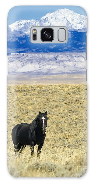 Standing Horse Galaxy Case