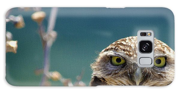 Owl Galaxy Case - Standing My Ground Deux by Fraida Gutovich