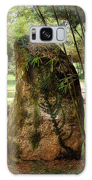 Standing Stone With Fern And Bamboo 19a Galaxy Case by Gerry Gantt