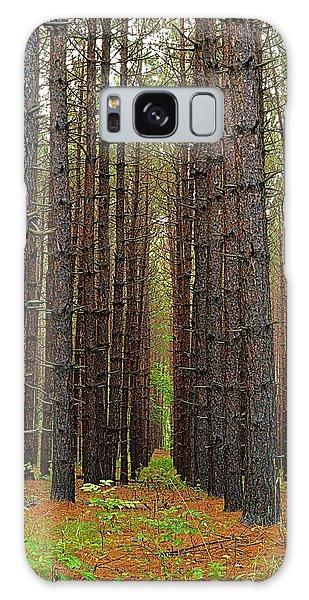Wellsboro Galaxy Case - Standing Tall - Hills Creek State Park by Joel E Blyler