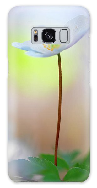 Standing Tall With Pride - Wood Anemone Wild Flower Galaxy Case