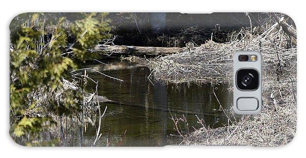 Aroostook County Galaxy Case - Standing Water by William Tasker