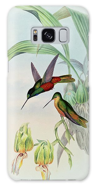 Feather Stars Galaxy Case - Star Fronted Hummingbird by John Gould