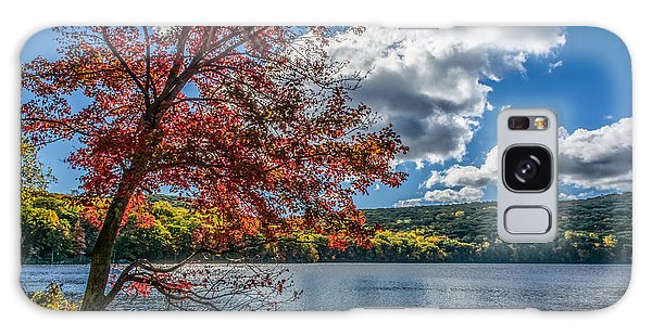 Starburst Tree @ Silvermine Lake Galaxy Case by Angelo Marcialis