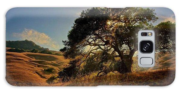 Starlight, California Oak Galaxy Case